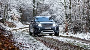 Sfondi desktop Land Rover Vista frontale Evoque Autobiography Si4 Auto