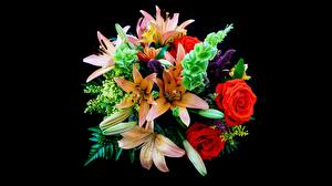Desktop wallpapers Lilies Rose Bouquets Black background Flowers
