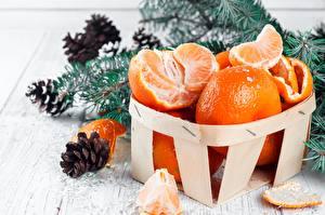 Fotos & Bilder Mandarine Neujahr Lebensmittel
