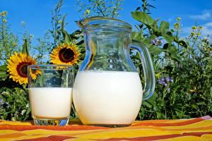 Desktop wallpapers Milk Jugs Highball glass Food