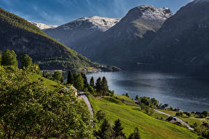 Images Norway Mountain Trees Bay Aurland Nature