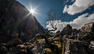 デスクトップの壁紙、、ノルウェー、山、石、岩、雲、木、太陽、Rogaland、自然