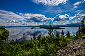 Bilder Norwegen Landschaftsfotografie Himmel Wolke Bäume Fjord Geiranger Natur