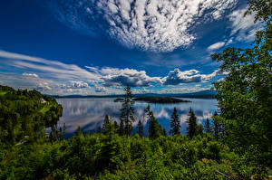 Pictures Norway Sky Clouds Trees Geiranger Nature