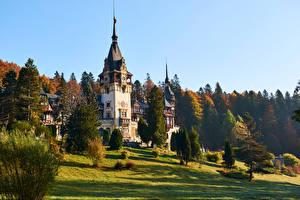 Hintergrundbilder Rumänien Burg Turm Bäume Peles Castle, Transylvania