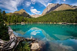 Bilder Schweiz Gebirge See Alpen Wolke Spiegelung Spiegelbild Lagh da Saoseo Natur