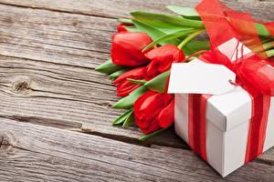 Fotos Tulpen Geschenke Bretter Blüte