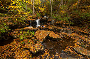Wallpaper USA Autumn Waterfalls Park Leaf Ricketts Glen