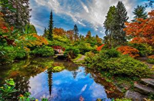 Bilder USA Garten Teich Herbst Seattle Brücke Bäume Spiegelt Kubota Garden Natur