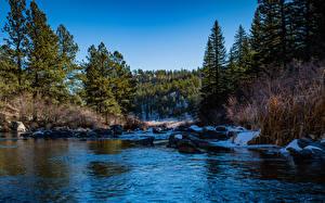 Bilder USA See Steine Bäume Lake George, Colorado