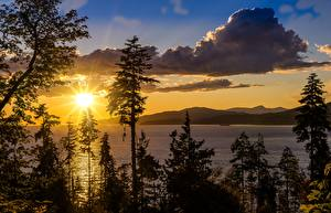 Image USA Sunrises and sunsets Lake California Trees Sun lake Tahoe