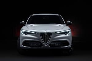 Fotos Alfa Romeo Softroader Weiß Metallisch Vorne Stelvio Veloce Ti (949), 2020 automobil