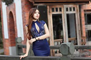Bilder Asiatische Braune Haare Kleid Hand Blick Unscharfer Hintergrund Mädchens