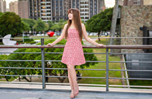Images Asiatic Brown haired Dress Posing female