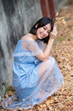 Photo Asiatic Brunette girl Dress Smile Sitting Foliage Blurred background Staring female