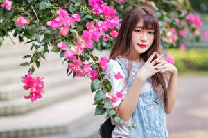 Photo Asiatic Flowering trees Hands Glance Blurred background female
