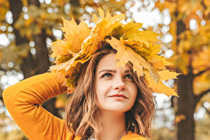 Images Autumn Brown haired Leaf Glance Girls