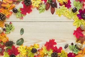 Hintergrundbilder Herbst Kastanien Ahorne Blatt Zapfen Eicheln Bretter Vorlage Grußkarte