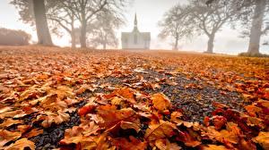 Bilder Herbst Kirche Neuseeland Blattwerk Nebel Hawke's Bay, Pukehou, Christ Church