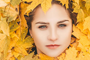 Image Autumn Face Foliage female
