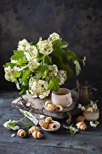 Photo Bouquet Croissant Wood planks Cup Branches Food