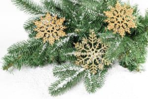 Bilder Neujahr Weißer hintergrund Ast Schnee Schneeflocken