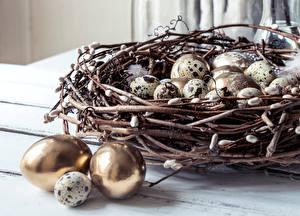 Wallpaper Easter Nest Egg