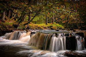 Images England Autumn Parks Waterfalls Trees County Durham Nature