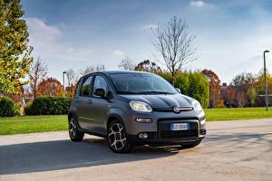 Bureaubladachtergronden Fiat Grijs Hybride voertuig Panda Sport Hybrid, (319), 2020 Auto