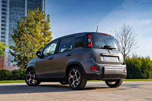 Bureaubladachtergronden Fiat Grijs Hybride voertuig Panda Sport Hybrid, (319), 2020 automobiel