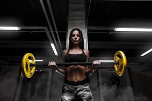 Desktop hintergrundbilder Fitness Trainieren Brünette Blick Hand Bauch Hantelstange Mädchens