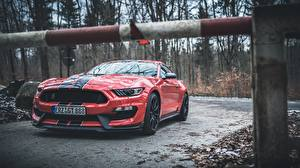Fotos Ford Rot Strips Mustang Shelby GT350