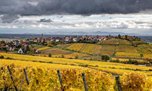 Wallpapers France Houses Fields Autumn Vineyard Riquewihr Cities Nature pictures images