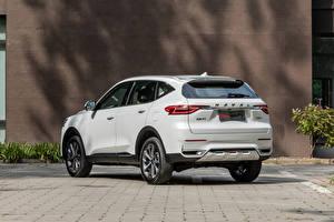 Fotos Haval Crossover Weiß Metallisch Chinesisch F7, 2020 Autos