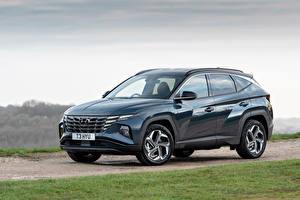 Bilder Hyundai Crossover Hybrid Autos Metallisch Tucson Hybrid (NX4), 2020 auto