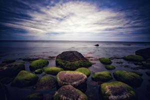 Wallpapers Ocean Evening Stone Moss Nature