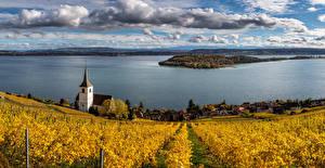 Tapety na pulpit Szwajcaria Jezioro Kościół Winnica Jesień Chmury Ligerz,  panorama Natura