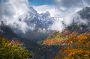 Photo Switzerland Mountain Autumn Forest Glarus region