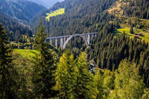 Fotos Schweiz Berg Brücken Alpen Bäume  Natur