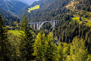 Pictures Switzerland Mountain Bridges Alps Trees  Nature