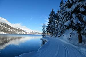 Pictures Switzerland Winter Mountain Lake Snow Alps Spruce Lake Silvaplana Nature