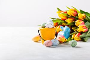 Wallpaper Tulips Easter Eggs Bucket