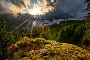 Hintergrundbilder USA Gebirge Sonne Wolke Bäume Washington State, White Pass