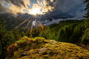 Sfondi desktop USA Montagne Il Sole Nuvole Alberi Washington State, White Pass