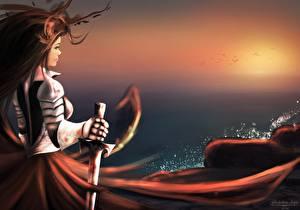 Pictures Warriors Knight Swords Armor Girls
