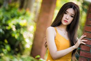Bakgrunnsbilder Asiater Uklar bakgrunn Hender Ser