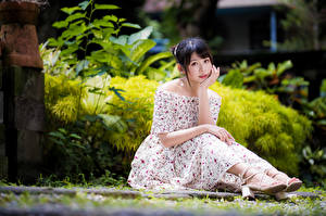 Photo Asian Dress Sit Staring Bokeh young woman
