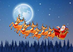 Bakgrunnsbilder Jul Vektorgrafikk Hjortedyr Slede Julenissen Månen Natt Flyging