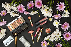 Images Chrysanthemums Many Lipstick Cosmetics Gray background Flowers