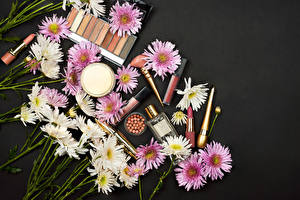 Pictures Chrysanthemums Many Lipstick Cosmetics Gray background Flowers